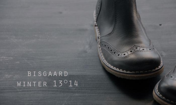 bisgaard blog